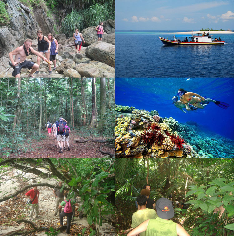 Ujung Kulon Tour West Java Wildlife Birding Adventure